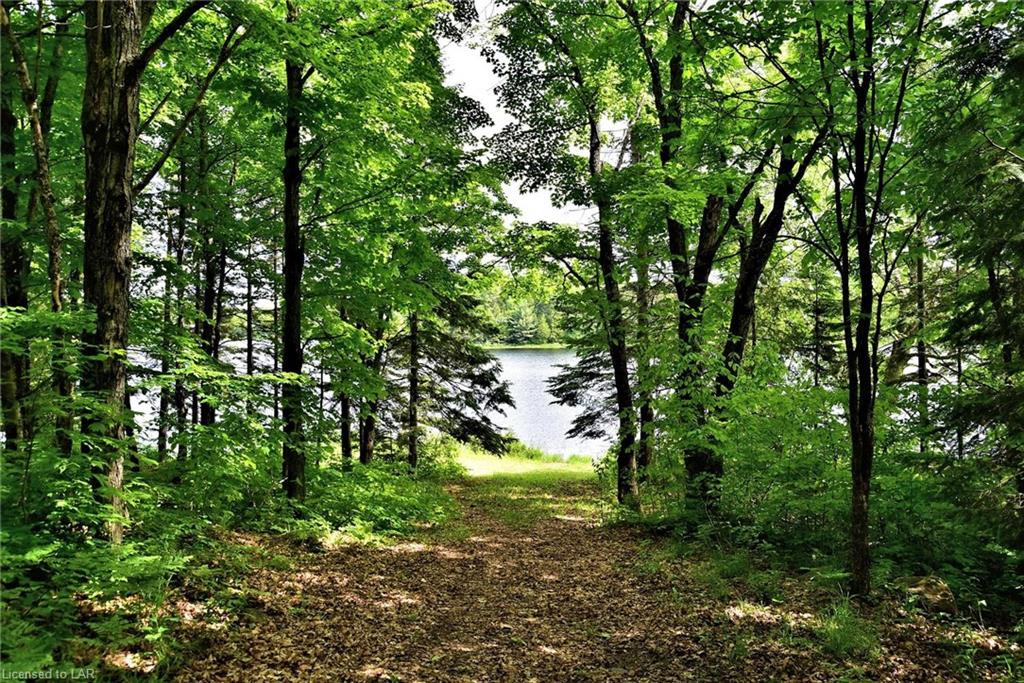 SCENIC walk to waterfront from log cottage on Moraine Drive